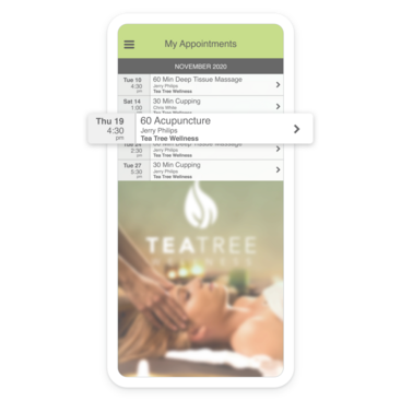 Client's booked appointments screen on a branded app from Tea Tree Wellness