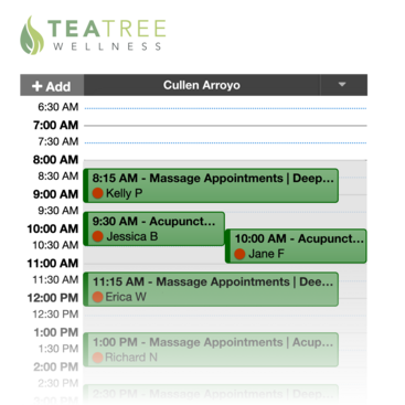 Schedule screen displaying a full day of appointments with some overlapping