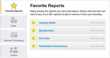 Product screen of favorite reports tab displaying autopay details, big spenders, first visits, and retail sales